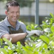Stock Photo: Smiling gardener