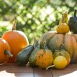 Pumpkins on a table — Stock Photo