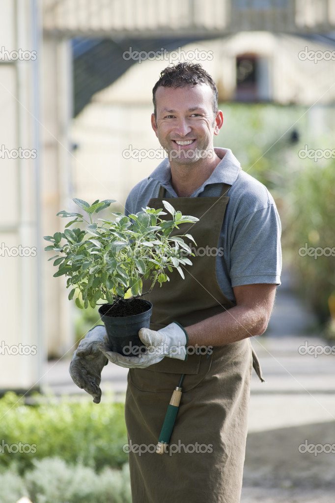 Smiling gardener in a greenhouse — Stock Photo #4210150
