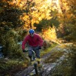 mountainbike-åkaren — Stockfoto