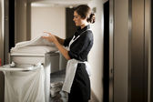 Maid At Work — Stock Photo