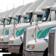 Stock Photo: Fleet of identical trucks