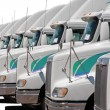 Fleet of identical trucks — Stock Photo