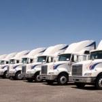 Semi Truck Fleet — Stock Photo