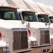 Stock Photo: Semi Truck Fleet