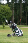 Golf bag — Stock Photo