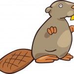 Beaver — Stock Vector