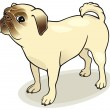 Stock Vector: Dog breeds: Pug