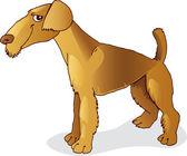 Airedale terrier hund — Stockvektor