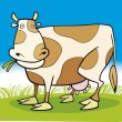 Farm animals: Cow — Stock Vector