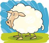 Boerderij dieren: schapen — Stockvector