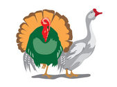 Goose and turkey — Stock Vector