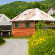 Orange house in a romanian village — Stock Photo #3648079