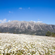 Mountains on Lefkada Island — Stock Photo