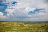 Pól uprawnych w Rumunii — Zdjęcie stockowe