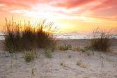 Sunset at Kalogria beach — Stock Photo