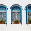 Windows at Agios Nikolaos Monastery - Stock Photo