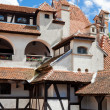 Royalty-Free Stock Photo: Bran Castle