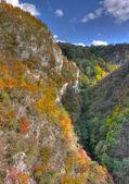 Crivadiei Gorges — Stock Photo