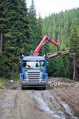 Truck loading wood — Stock Photo