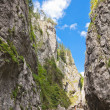 Bicaz Gorges - Stock Photo