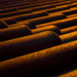 Stock Photo: Terracottroof tiles