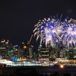 Canada Day, Vancouver BC Canada — Stock Photo #3606423