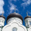 The Blagoveshchensk cathedral. A detail. - Stock Photo