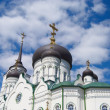 Blagoveshchensk cathedral. detail. — Stock Photo #3853068