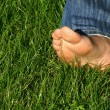 Barefoot in grass — Stock Photo