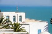 тунис — Стоковое фото