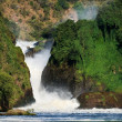 Murchison  falls. — Stock Photo