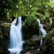 Waterfalls of  Bwindi forest. 2 — Stock Photo