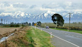 Road to Arthur's Pass — Stock Photo