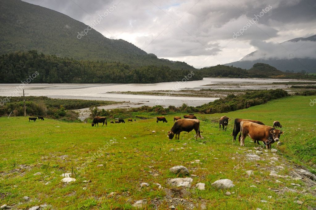 Grazing lands after the storm, Arthur's Pass National Park, New Zealand — Stock Photo #3780202