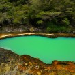 Stock Photo: Marble Terrace, Waimangu Volcanic Valley, Rotorua, New Zealand