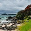 Stock Photo: Rocky Coast, Coastal walk at Manganui, Bay of Plenty