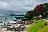 Rocky Coast, Coastal walk at Manganui, Bay of Plenty — Stock Photo