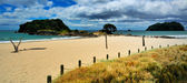 Mt Manganui, Bay of Plenty New Zealand — Stock Photo