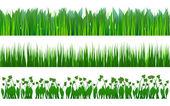Grass pattern — Stock Vector