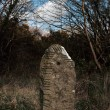 Ancient standing stone - Stock Photo