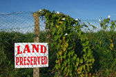 保存の土地 — ストック写真