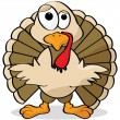 Cartoon turkey - Stock Vector
