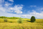 Summer landscape: cloudy blue sky over meadow and trees — Stock Photo