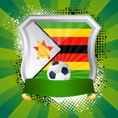 Shield with flag of Zimbabwe — Stock Vector