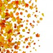 Vector de stock : Fallen autumn leaves background