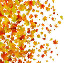 Fallen autumn leaves background — Stock Vector