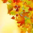 Royalty-Free Stock Vector Image: Autumn leaves background.