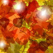 Light through autumn leaves — Stock Vector