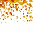 Royalty-Free Stock Vector Image: Background of autumn leaves.
